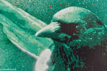 magpie-thedoghouse-detail